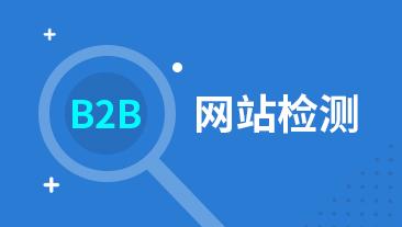 B2B网站检测