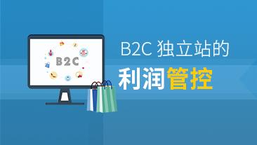 B2C独立站的利润管控