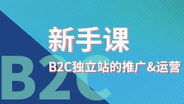 B2C独立站的推广&运营